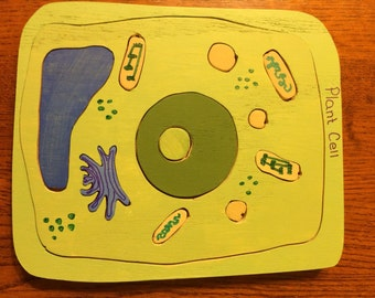 Plant Cell Tray Puzzle