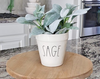 Ceramic Potted Lambs Ear - SAGE