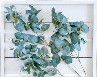Set of Artificial Seeded Eucalyptus Stems.