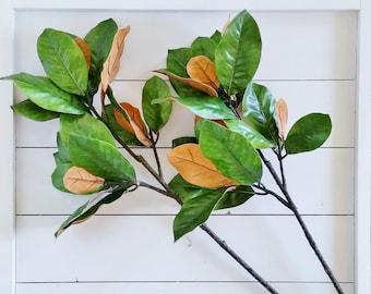 Set of Artificial Magnolia Stems.