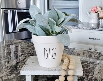 Ceramic Potted Lambs Ear - DIG