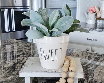 Ceramic Potted Lambs Ear - SWEET