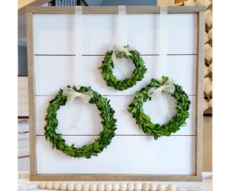 Preserved Boxwood Wreaths with Ribbon Trim
