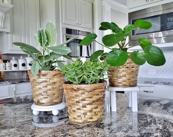 Round 7 Inch Bamboo Planter. Rattan Planter. Basket Planter.