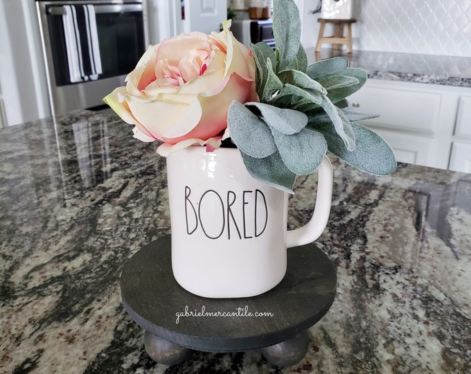 Potted Lambs Ear in Ceramic Statement Mug