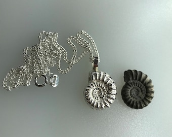 Ammonite Pendant, Sterling Silver, Sand Cast with Sterling Silver Curb Chain