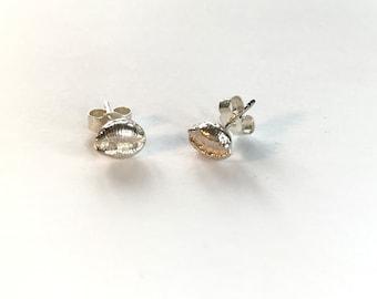 Silver Cowrie Stud Earrings, Sterling Silver Sand Cast