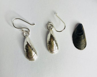 Mussel Shell Earrings, Sterling Silver, Sand Cast with a Sterling Silver Curb Chain