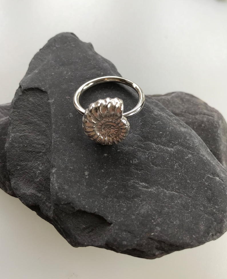 Ammonite Ring Sterling Silver Sand Cast Ammonite on a Sterling Silver Ring Size Q