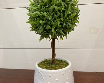 Small green faux topiary in white ceramic pot