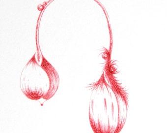 original drawing in red pen little hairy botanical Herbarium imagination