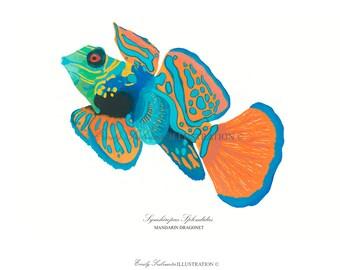 Mandarin Fish Art Print | Sea Creature Wall Art | Scientific Nature Illustration Mandarin Dragonet | Orange Blue Watercolor Home Decor