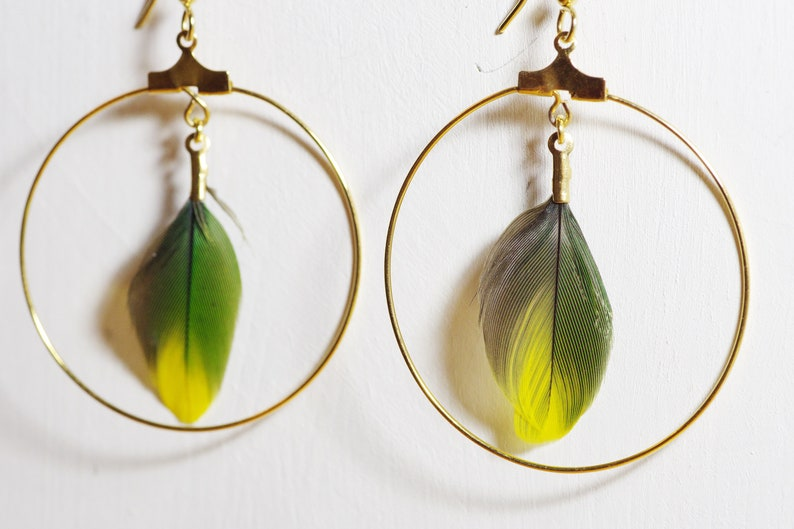 Feathers earings /_ golden rings /_ natural feather green and yellow anti-allergy hooks surgical steel  gold plated /_ gift for her