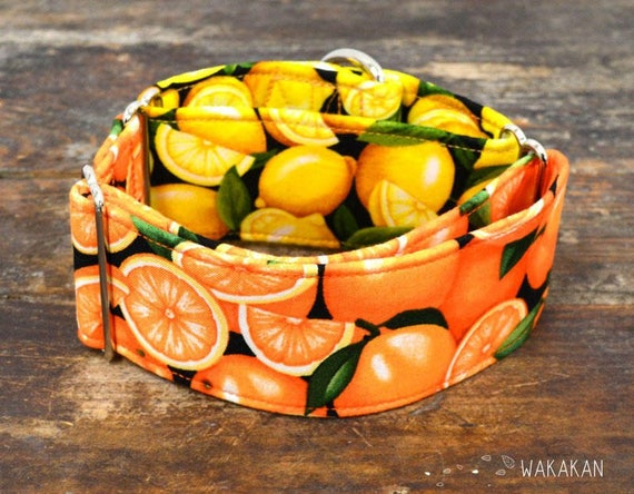 Martingale dog collar model Citrus. Adjustable and handmade with 100% cotton fabric. Lemons and oranges design. Fruity style. Wakakan