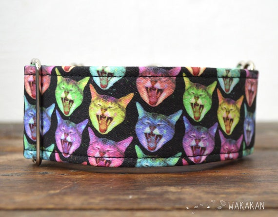 Martingale dog collar model  LOL Cats. Adjustable and handmade with 100% cotton fabric. Laugh. Wakakan