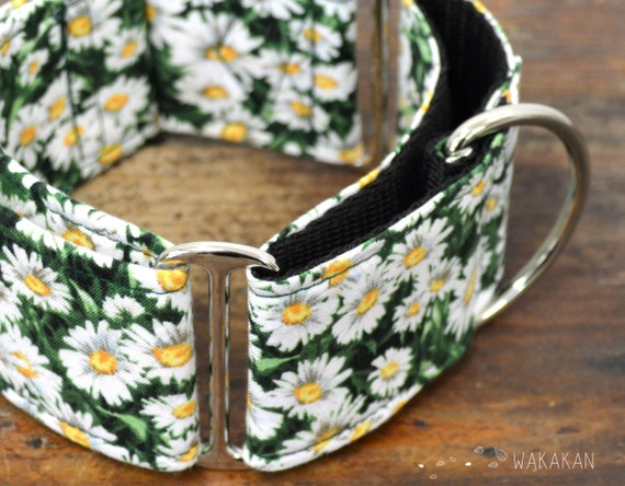 Martingale dog collar model Daisy. Adjustable and handmade with 100% cotton fabric. Spring flower field, country Wakakan