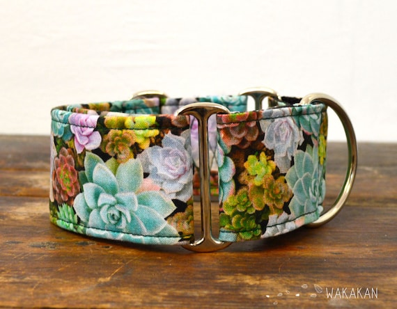 Martingale dog collar model Succulents . Adjustable and handmade with 100% cotton fabric. Cactus, plants. Wakakan