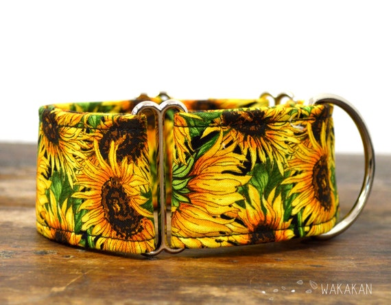 Martingale dog collar model Van Gogh. Adjustable and handmade with 100% cotton fabric. Sunflowers, summer time Wakakan