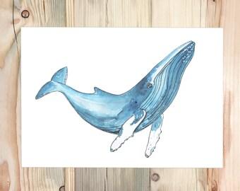 Humpback Whale Print, A4 Giclée