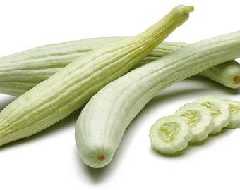 Cucumber Armenian Yard Long Snake Melon Rare Non GMO Heirloom Vegetable Seeds
