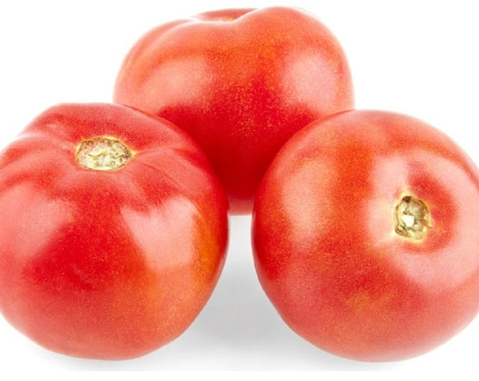 Tomato Rutgers VF Jersey Slicer Non Gmo Heirloom Vegetable Seeds Sow No GMO® USA
