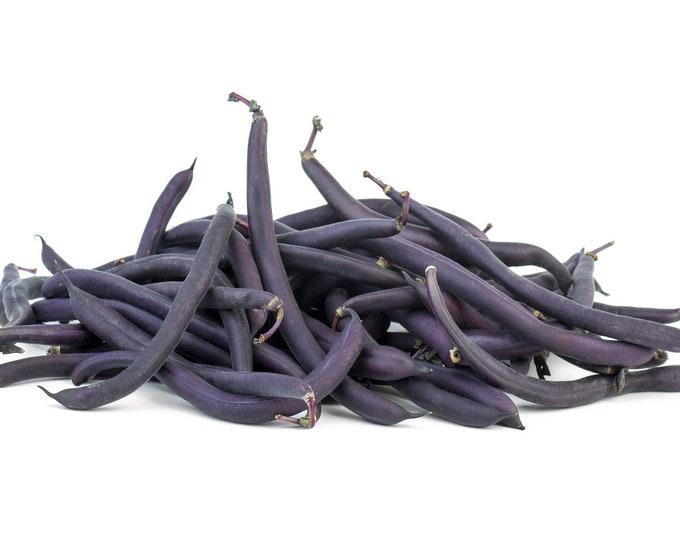 Bean Seeds, Bush Beans, Royal Burgundy, Non GMO, Heirloom, Home Garden, Veggie Seeds, Purple Beans, Snap Beans, String Beans