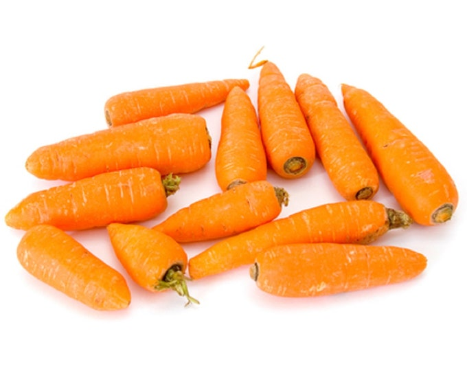 Carrot Little Fingers Non GMO Heirloom Garden Vegetable Seeds Sow No GMO® USA
