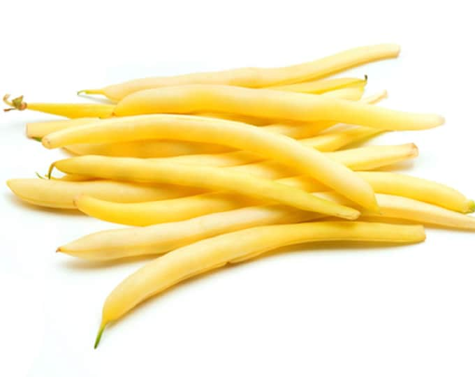 Bean Seeds, Bush Bean, Cherokee Wax, Non GMO, Heirloom, Garden, Vegetable Seeds, USA, Golden Wax, Yellow Wax