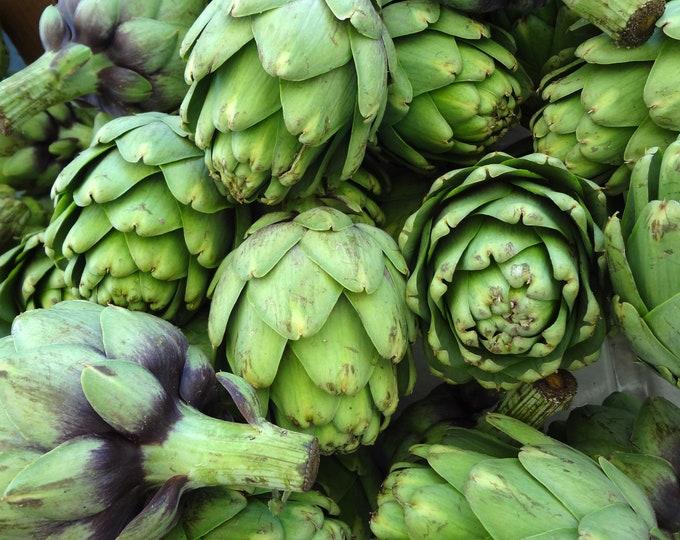 Artichoke Seeds, Green Globe, Non GMO, Heirloom, Garden, Vegetable, USA, Annual, Perennial, Grow Artichoke Hearts, Prolific Producer