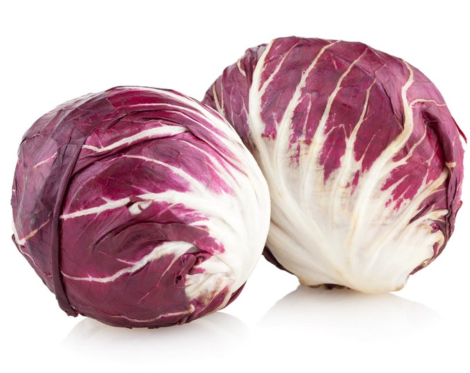 Radicchio Palla Rosa Non GMO Heirloom Garden Vegetable Seeds Sow No GMO® USA