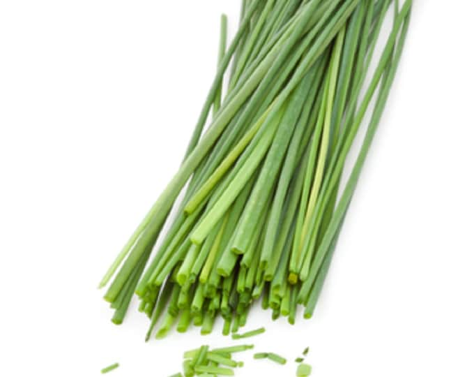 Chives - Common Non GMO Heirloom Garden Herb Seeds Sow No GMO® USA