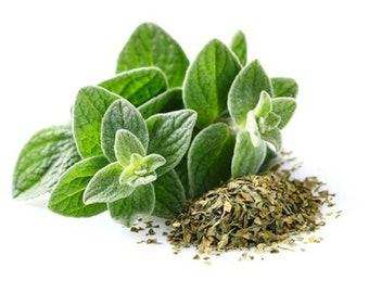 Oregano Italian Non GMO Heirloom Culinary Garden Herb Seeds Sow No GMO® USA