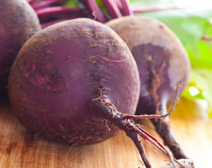 Beet Ruby Queen Non GMO Heirloom Garden Vegetable Seeds Sow No GMO® USA