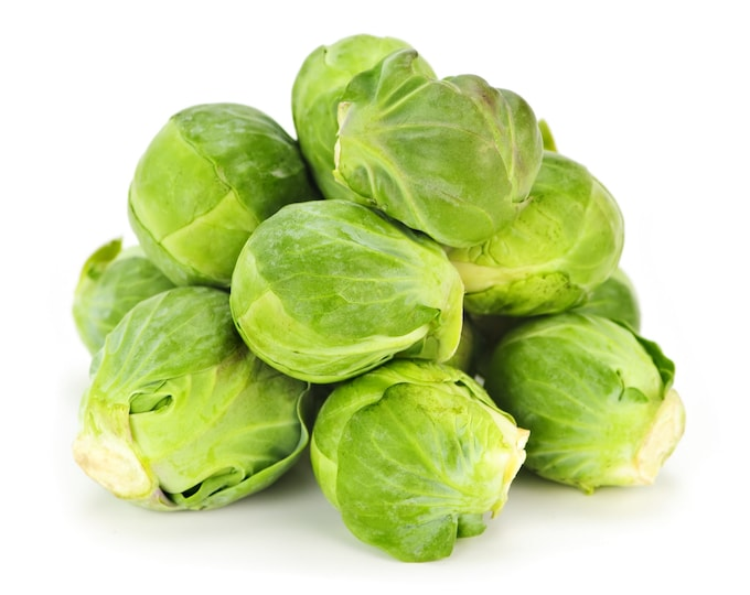 Brussels Sprout Long Island Non GMO Heirloom Vegetable Seeds Sow No GMO® USA