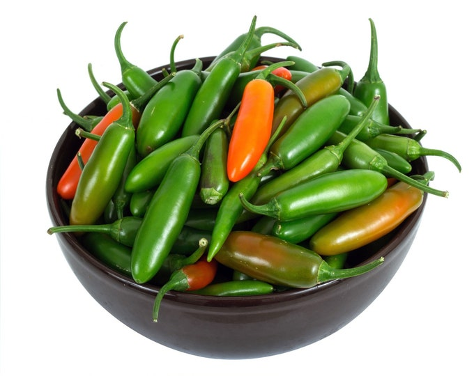 Pepper Early Hot Jalapeno Non GMO Heirloom Vegetable Seeds Sow No GMO® USA