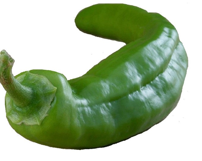 Pepper Anaheim Chili Mild to Medium Heat Non GMO Heirloom Seeds Sow No GMO® USA