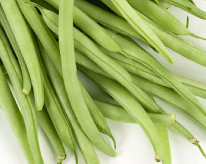 Bean Seeds, Bush, Provider, Non GMO, Heirloom, Home Garden, Vegetable Seeds, USA Seller, Snap Beans, String Beans, Green Beans