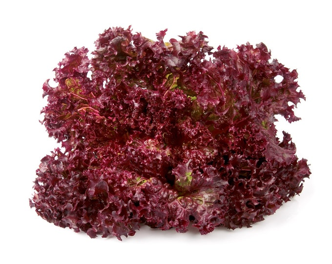 Lettuce Ruby Red Non GMO Heirloom Garden Vegetable Seeds Sow No GMO® USA