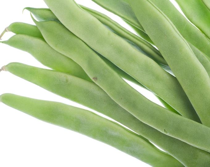 Bean Seeds, Bush Beans, Contender, Non GMO, Heirloom, Garden, Vegetable Seeds, Snap Beans, String Beans, Green Beans