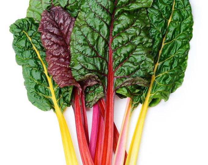 Swiss Chard Rainbow Mix Non GMO Heirloom Vegetable Seeds Sow No GMO® USA