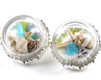 1/2 7/16 00g 0g 2g 4g 6g 8g 10g 12g 1 PAIR Ocean Terrarium Plugs Gauges Tunnels Earrings Wedding Bridal Bridesmaid Seashell Starfish Beach