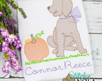 Pumpkin Dog Sketch Embroidery, Dog with Pumpkin, Lab with Pumpkin, Pumpkin Pup