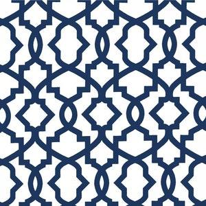 Ikat Fabric Cotton Drapery Fabric Regatta Sky Blue Fabric Raji Regatta Blue-Premier Prints Made in the USA fabric 30 YD ROLL