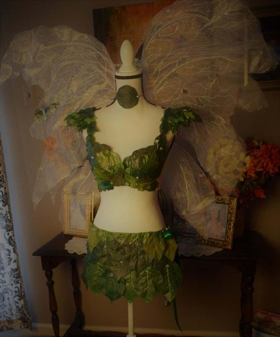Foliage fairy green adult