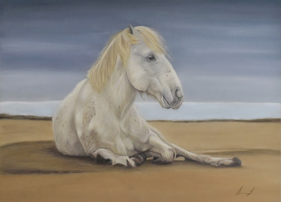 Wild horse of Camargue, France - high quality archival print