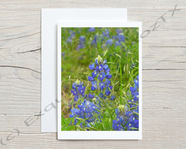 Variety of A7 greeting cards image 3