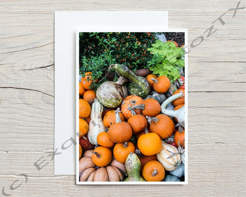 A variety of A7 fall greeting cards image 3