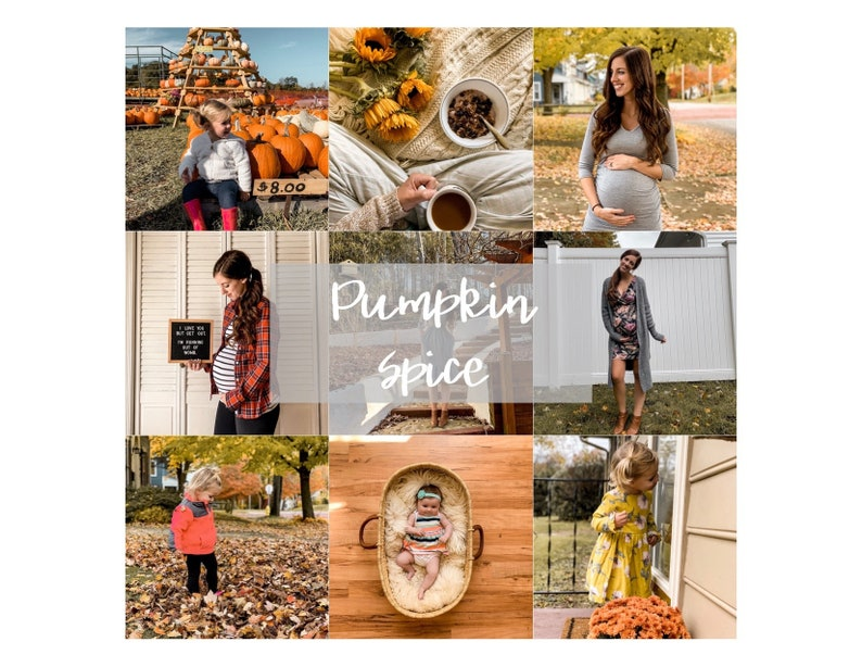 Pumpkin Spice Preset image 0