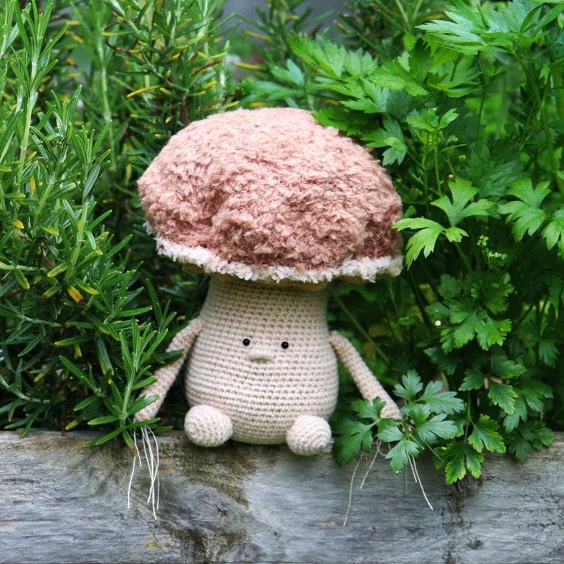 PILI  Porcini  Crochet Mushroom  Crochet Pattern  image 0