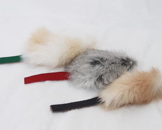 Kitten Mouse